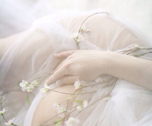 delicate, dreamy, and ivory image