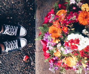 colors, flowers, and mood image