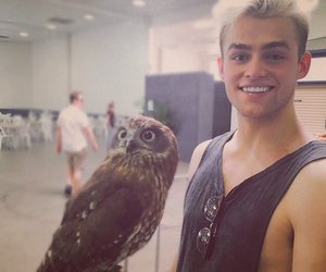 bae, bennet, and owl image
