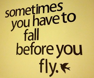 fall and fly image