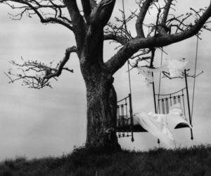 bed, tree, and black and white image
