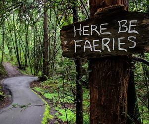 fairy, faery, and forest image