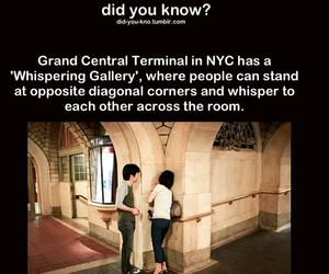 new york, whisper, and didyouknow image