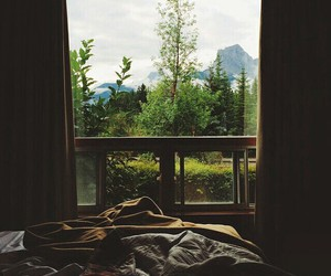 nature, bed, and home image