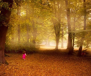beauty, child, and fall image
