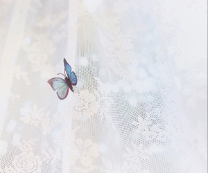 butterfly, ethereal, and lace image