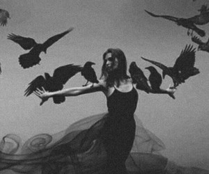 birds, black, and girl image