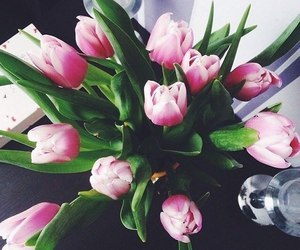tulips, flowers, and style image