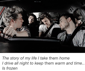 one direction, 1d, and story of my life image