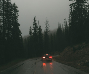 nature, road, and car image