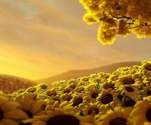 amazing, sunflower, and lovely flowers image