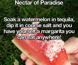 alcohol and life hack image