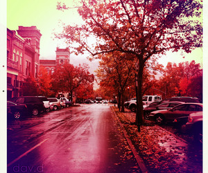 autumn, street, and colors image
