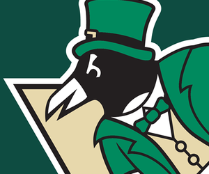 cool, pittsburgh penguins, and st patrick's day image