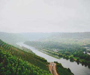 fields, water, and fog image