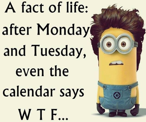 calender, minion, and monday image