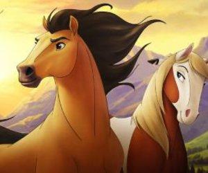 spirit and horse image