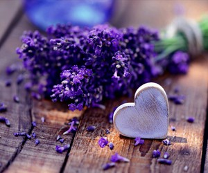heart, flowers, and lavender image