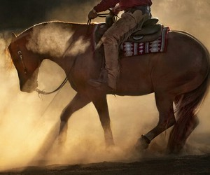 awesome, country, and horse image