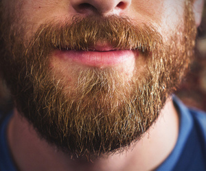 beard and barba image