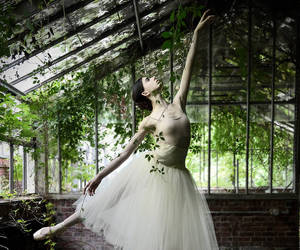 dance, green, and nature image