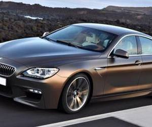 bmw and brown image