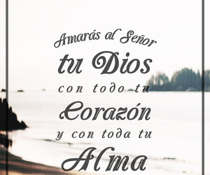 amor, frase, and dios image