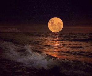 love, beautiful, and moon image