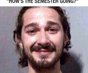 funny, semester, and lol image