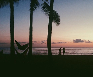 indie, palms, and sea image