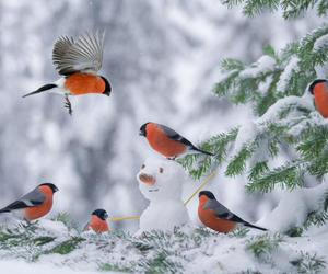 bird, snowman, and winter image