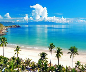 beach, Island, and blue water image