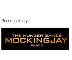 amazing, cry, and the hunger games image