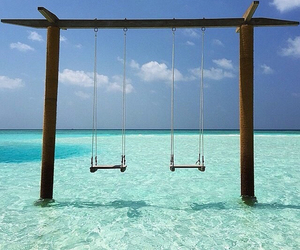 beach and couple swing image