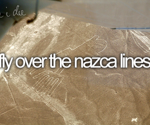 fly and nazca image