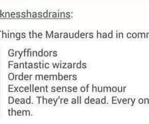 the marauders image