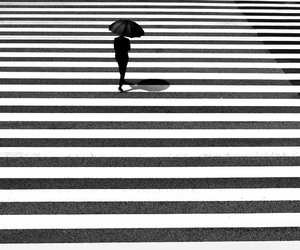black and white, crosswalk, and photography image