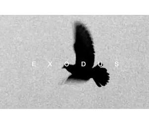 exo and exodus image
