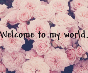 flowers, pink, and welcome image