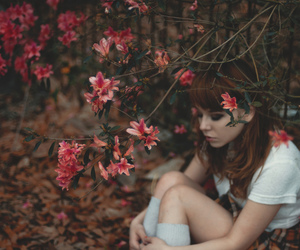 cemetery, flowers, and girl image