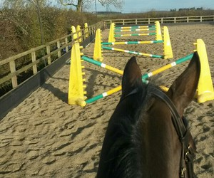 arena, horse riding, and jumps image