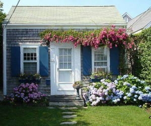 blue, home, and flowers image