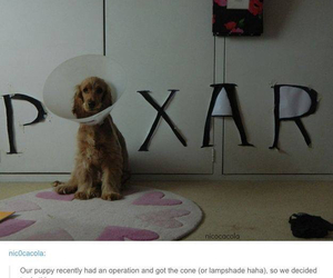 pixar, dog, and funny image