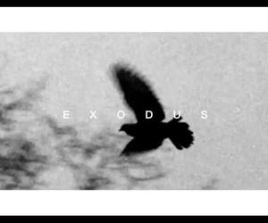 era, exo, and new image
