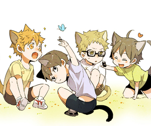 haikyuu, anime, and cat image