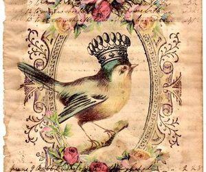 bird, vintage, and background image