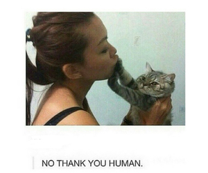 funny, cat, and boyfriend image