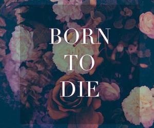 born to die, lana del rey, and die image