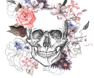 day of the dead, floral, and skull image
