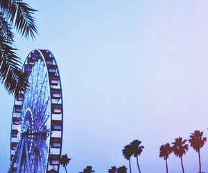 beach, coachella, and summer image